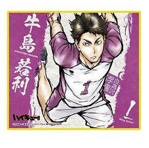 Wakatoshi Ushijima Haikyuu! Door Banner